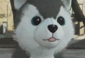 собака в Metal Gear Online